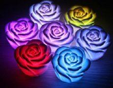 led rose (1)