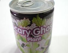 geisterpflanze