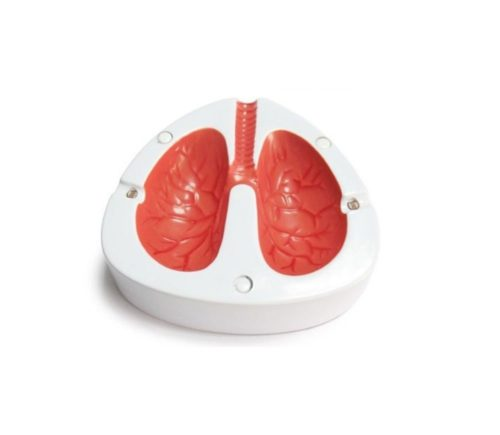 lungen aschenbecher (1)