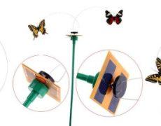 solarschmetterling4