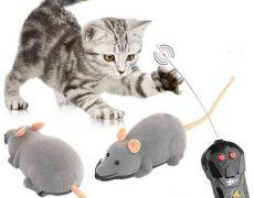 """RC Spielzeug """"Maus"""" für Haustiere für 7,50€"""