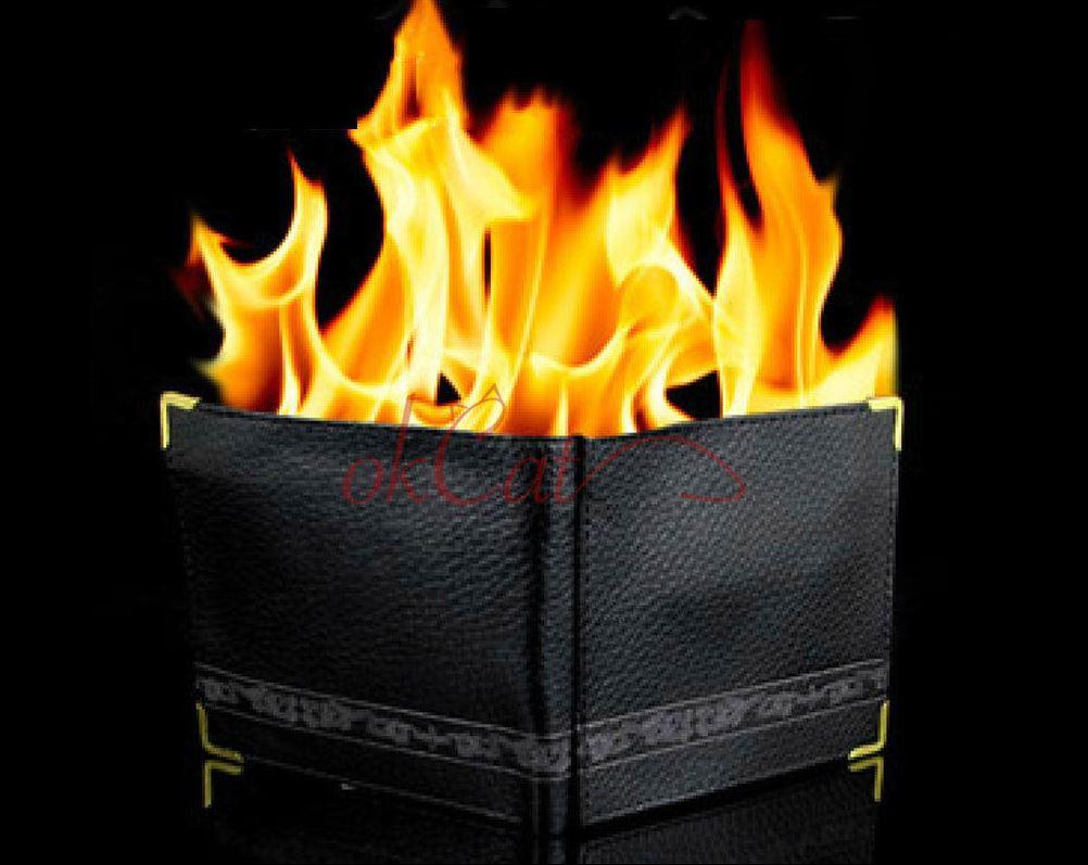 brennendes Portmonee