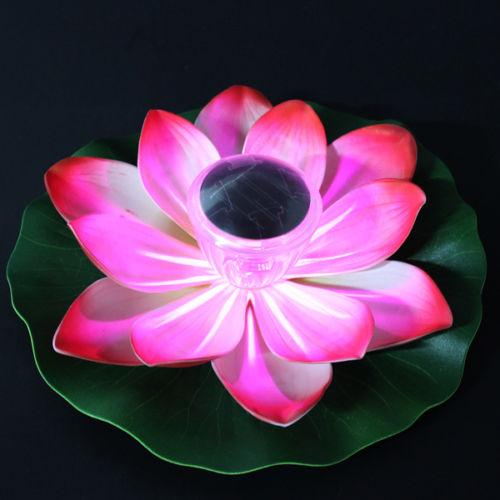 solar lotus (1)
