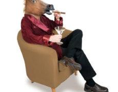 Pferdemaske Elegant