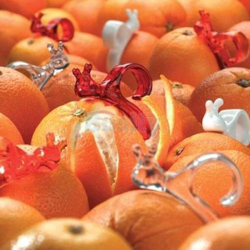 schnecke-orange-schaeler-1