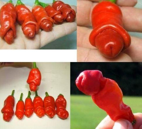 Peter Pepper Chili