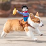 Hund-Geschirr-Cowboy