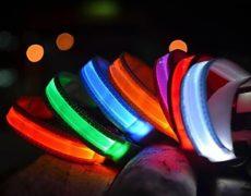 Tierhalsband mit Beleuchtung