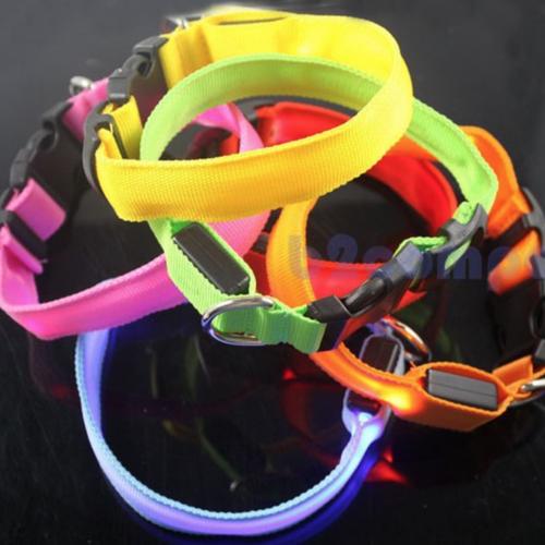 led-halsband