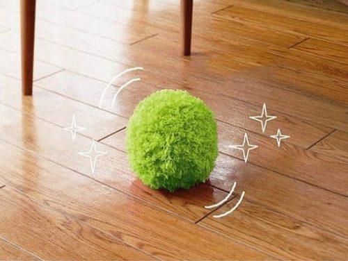 wischmop-ball