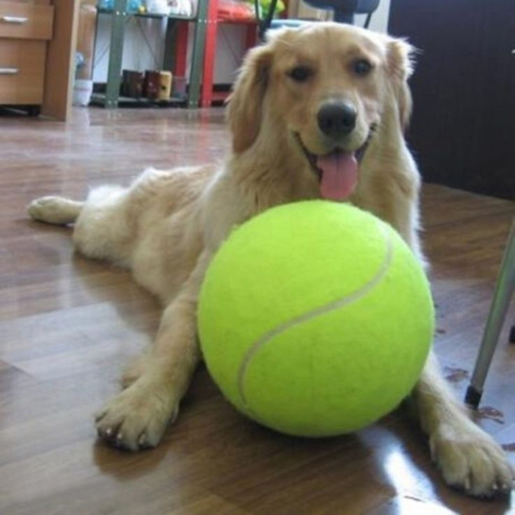 Tennisball riesig