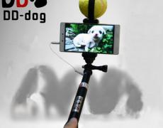 Hunde-Selfiestick