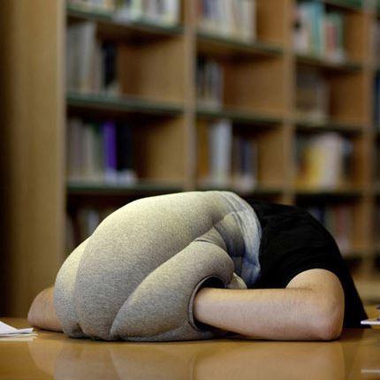 Straußenkissen! Einfach mal den Kopf ins Kissen stecken.