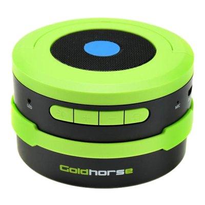 GoldHorse Speaker