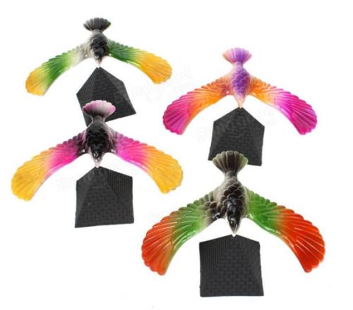 balancing bird colors