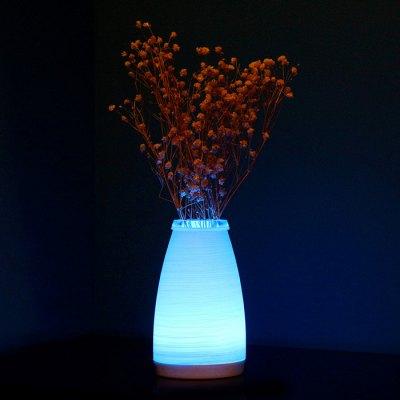 doonne vase smart (5)