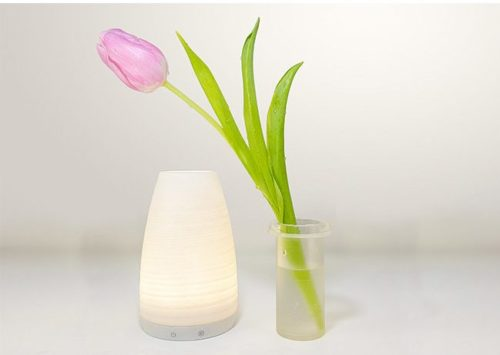 doonne vase smart (6)