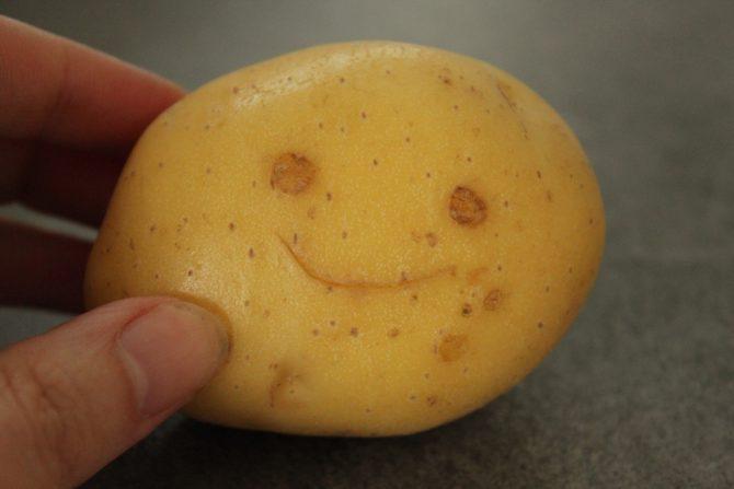 pommes presse (2)