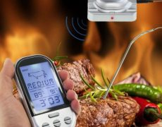 bbqthermometer2