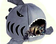 hai-kissen-haustier-3