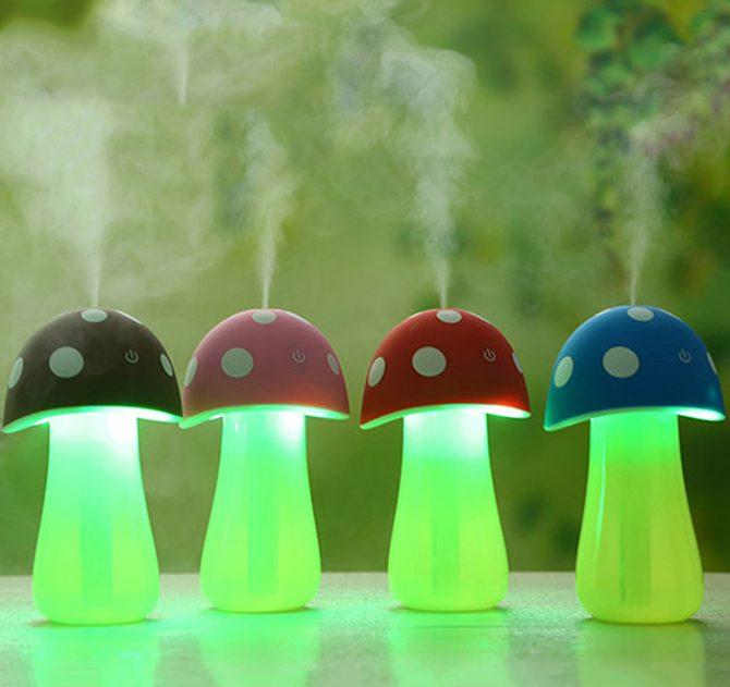pilz-luftbefeuchter-1