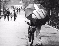 F**k You Regenschirm mit Mittelfinger