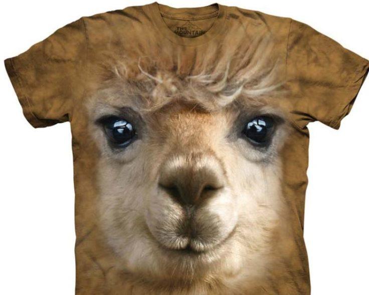 alpaka-mode-shirt-big-face