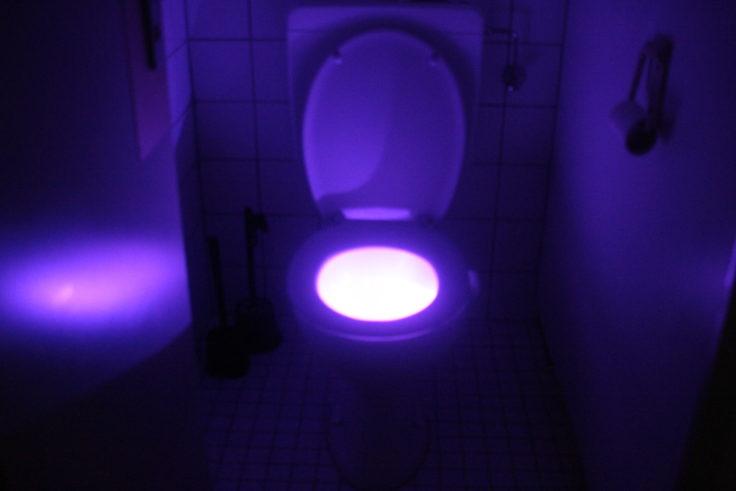 Toilettenlicht blau