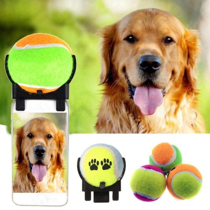 Selfie-Stick für Hunde