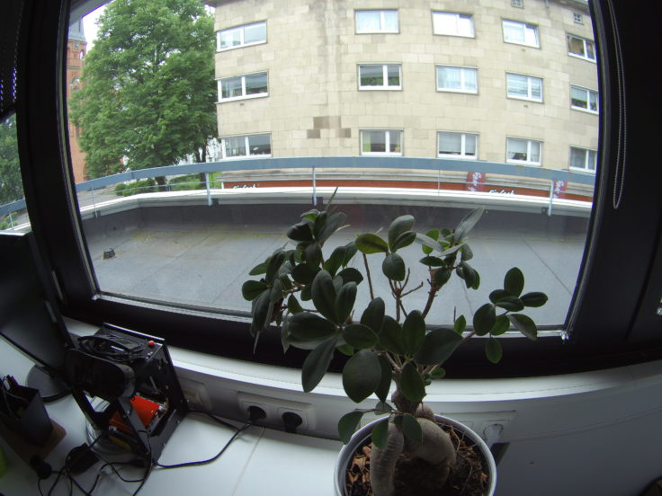 Foto ThiEYE T5e Bonsai