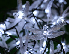 Die Libellen LED Lichterkette während sie weiß leuchtet.