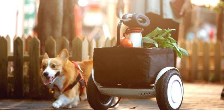 Xiaomi Ninebot Plus Hund
