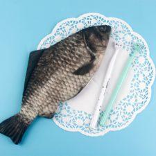 Fischmäppchen Etui für Stifte