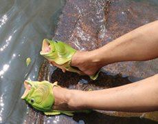 Fisch-Schuhe