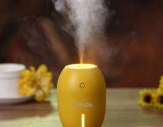 Zitrone Luftbefeuchter