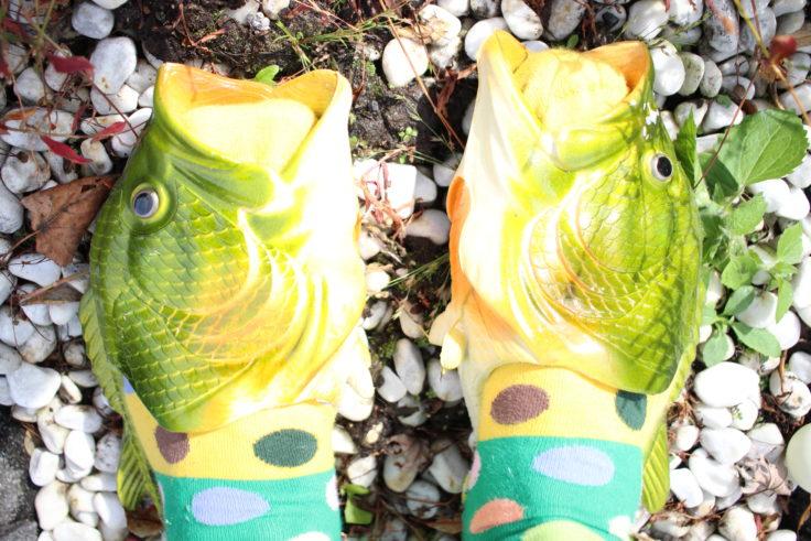 Fischschlappen oben