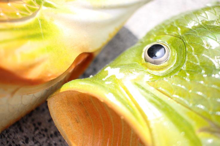 Fischschlappen weiße Farbe