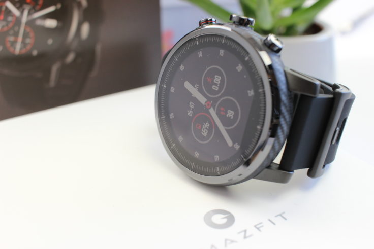 Huami Amazfit Stratos Display