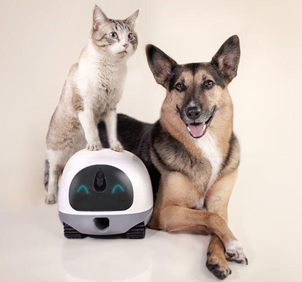 VAVA Pet Cam Haustierroboter Haustiere