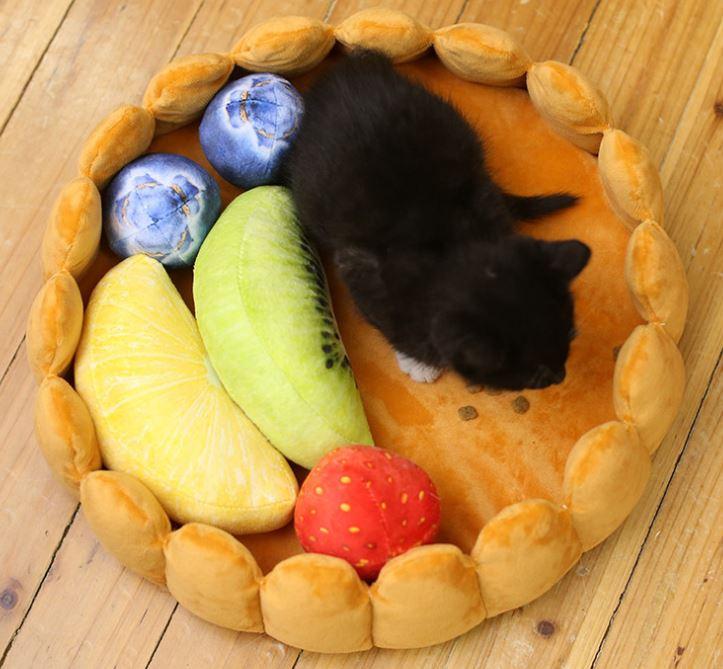 Obstkorb-Bett Katze