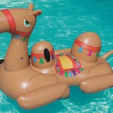 Aufblasbares Kamel