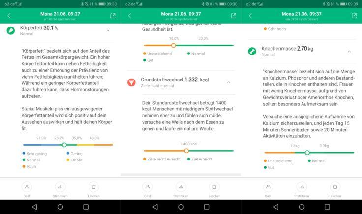 Xiaomi Mi Scale Waage MiFit App Messwerte