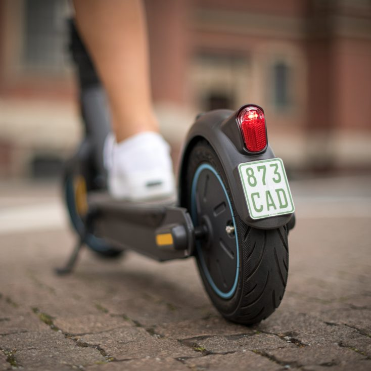 Ninebot KickScooter MAX G30D Versicherungsplakette