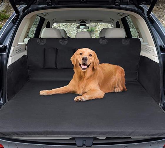 Photoshop Auto Hund