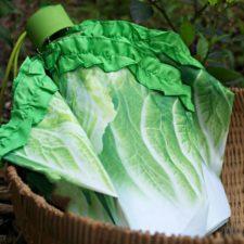 Salat-Regenschirm