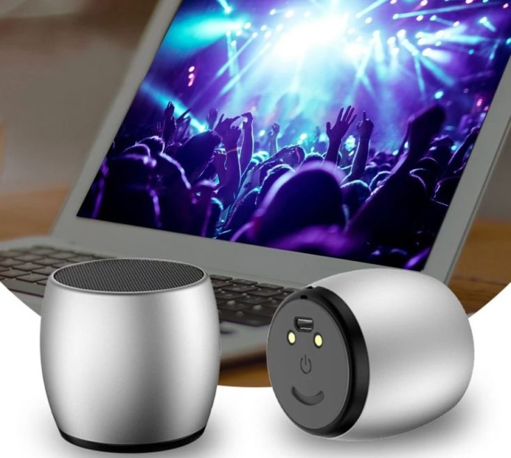 SARDiNE wireless Speaker mit Laptop.