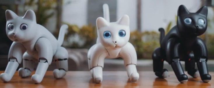 MarsCat Roboter-Katze Farben
