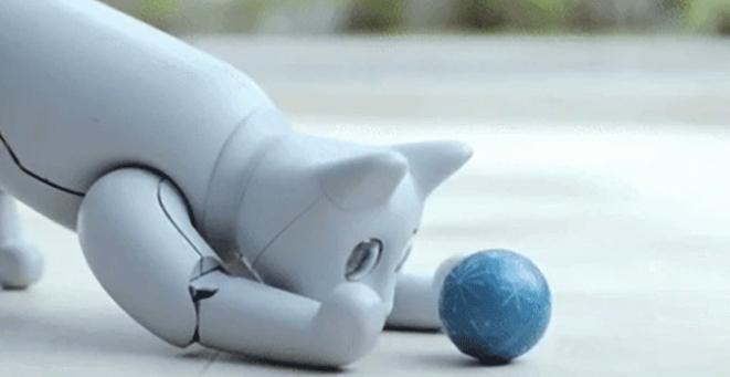 MarsCat Roboter-Katze Spielzeug