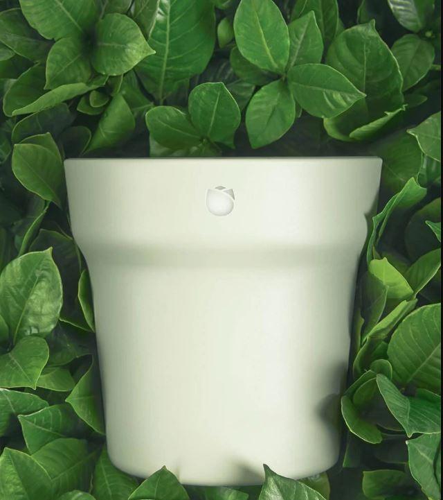 Ropot grüne Blätter.