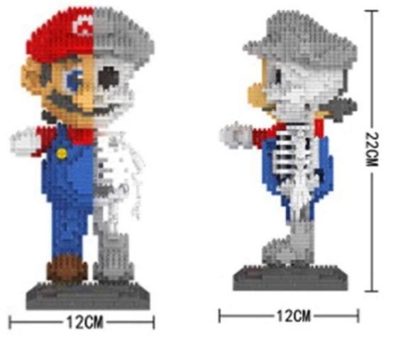 Skelett Marios Ausmasse